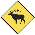 Elk Warning Sign